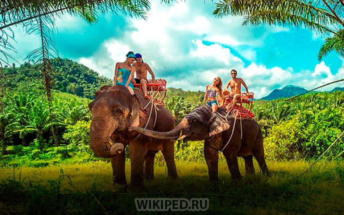 Шри-Ланка лето в 2019 году