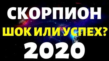 СКОРПИОН ПРОГНОЗ НА 2020 ГОД на 12 сфер жизни таро расклад